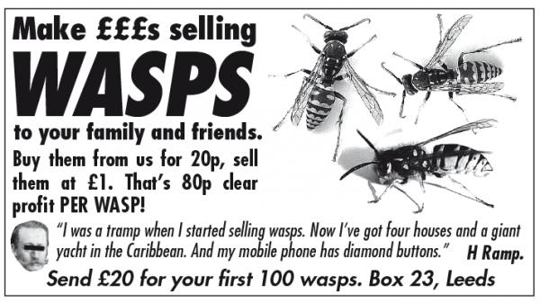 joke wasps.png